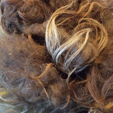 rå uld ruwe wol