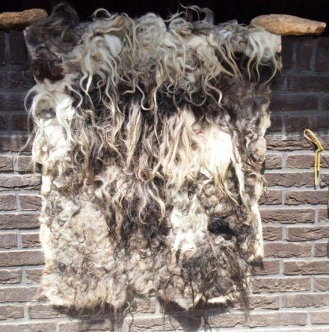 viltwandkleed wandkleed van schapenwol filtet vægtæppe vægtæppe af uld